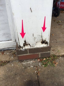 Rot and insect damage caused to garage from leaking gutters